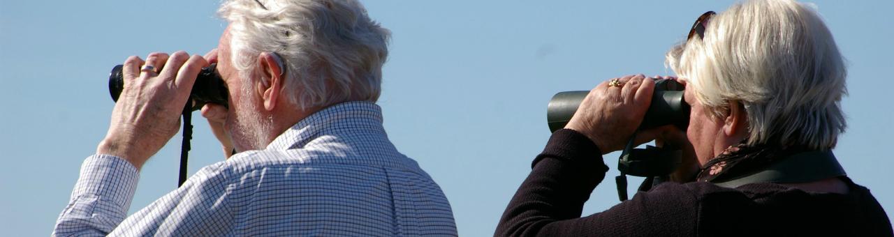 binoculars-2194228_192021.jpg